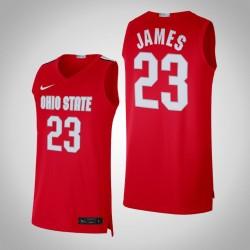 NCAA LeBron James Ohio State Buckeyes & 23 Scarlet Alumni Begrenzte Basketball Jersey